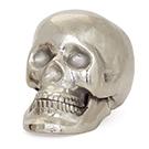 Crâne décoratif en aluminium