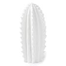 Cactus décoratif blanc