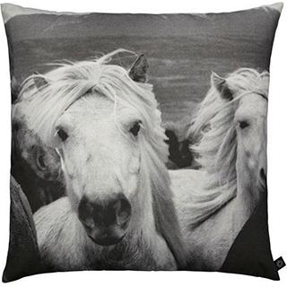 Coussin carré motif chevaux