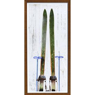 Cadre Ski Vintage I