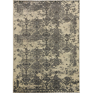 Carpette (5 x 8 pi)