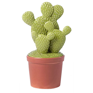 Boîte décorative en céramique en forme de cactus