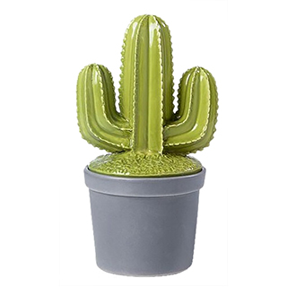 Bôîte décorative en céramique en forme de cactus