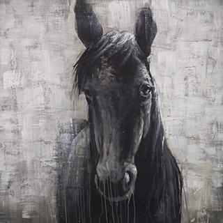 Toile cheval