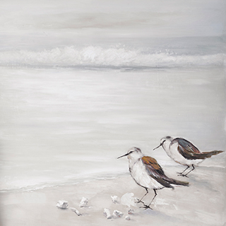 Toile oiseaux
