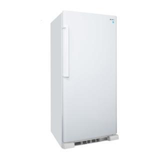 Tout réfrigérateur 17 pi3