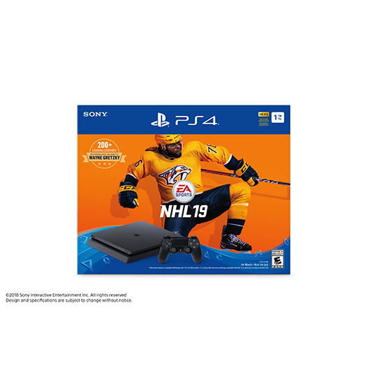 PS4 1TB/NHL 19/1MANETTE Solutions 2Go