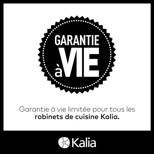 Robinet de cuisine monocommande Karismatik - Inox PVS Kalia